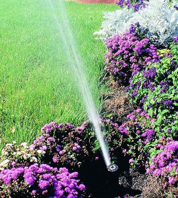 Photo of Trinkwasser schützen – Regenwasser nützen