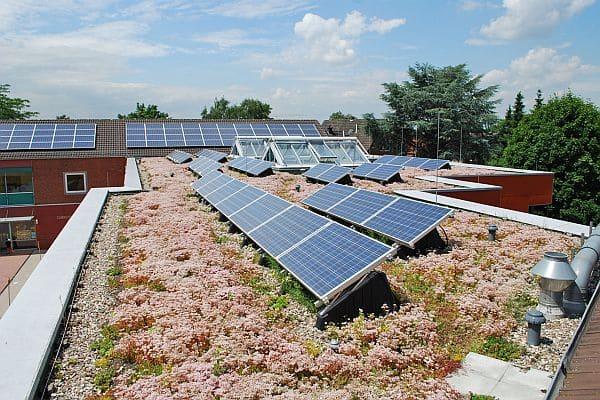 Photo of Kräutergarten auf dem Dach