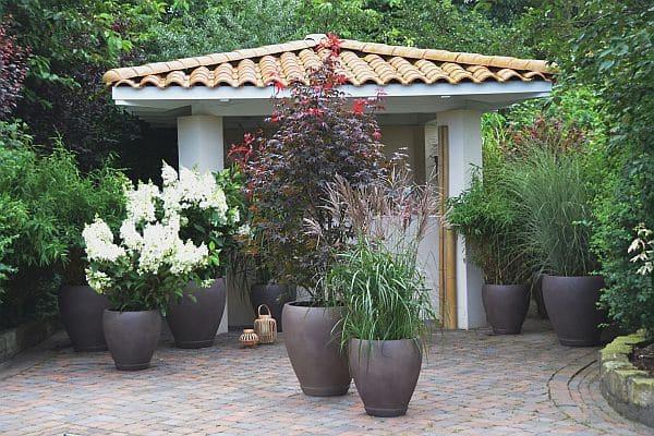 Photo of Fernöstliches Flair für das grüne Wohnzimmer