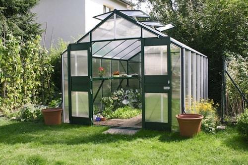 Photo of Bio-Gemüse gedeiht im Gewächshaus auch spät im Jahr