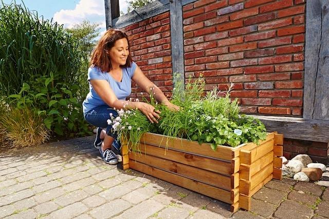Photo of Bio-Garten auf kleinstem Raum