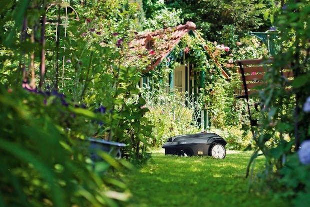 Photo of Mit einem Mähroboter wird die Gartenarbeit zum Vergnügen