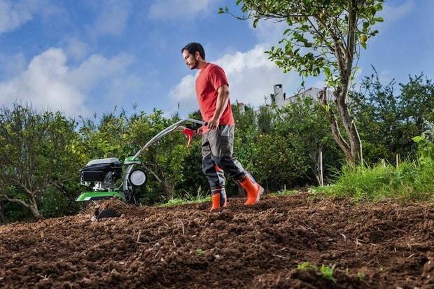 Photo of Expertentipp: Bodenvorbereitung im Herbst hilft Blühpflanzen im Frühling