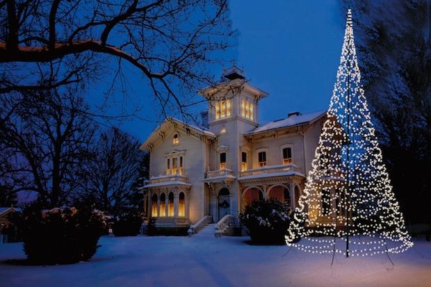 Photo of Wetterfester Weihnachtsbaum ist im Nu aufgebaut und sorgt für Stimmung