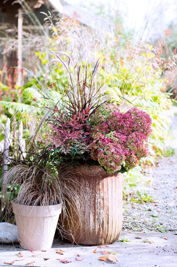 Photo of Kreativer Garten im Winter Trending in the Garden – Draußen in der kalten Jahreszeit