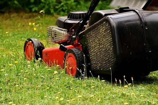 Photo of Gartensaison – Rasen richtig pflegen