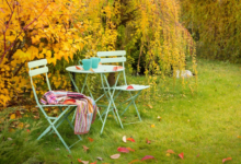 Photo of Gartenfreuden zwischen den Minijobs