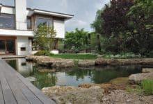 Photo of Naturnahe Schwimmteiche liegen im Trend