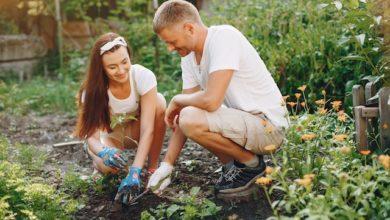 Photo of Gartengestaltung leicht gemacht